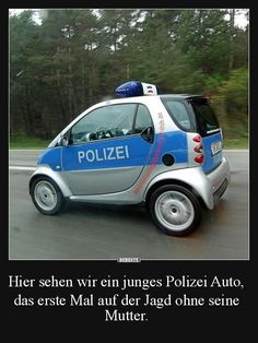 (notitle) # sayings - Humor - Humor bilder Funny Memes, Hilarious, Jokes, Suv Bmw, Cool Pictures, Funny Pictures, Smart Auto, Quotes About Everything, Smart Fortwo