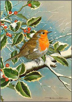 Birds Painted