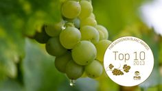 2013 FNB Top 10 aims at identifying the Superstars of Sauvignon Blanc