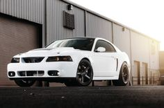 2000 Ford Mustang GT - Bad Karma: When not building precision tactical weaponry, Tom Miller can be found fabbing parts for his custom GT. Mustang Cobra, 2000 Ford Mustang Gt, Mustang Rims, Ford Gt, Mustang Horses, Mustang Wheels, New Edge Mustang, Performance Cars, Dream Cars