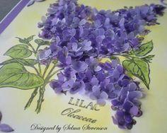Vellum Lilacs tutorial by Selma Stevenson  (062910)
