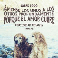 """""""Sobre todo, ámense los unos a los otros profundamente, porque el amor cubre…"""