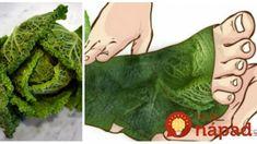 Mojito, Plant Leaves, Plants, Medicine, Diet, Flora, Plant, Planting