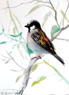 Sparrow original watercolor painting 9 X 12 in by ORIGINALONLY, $24.00