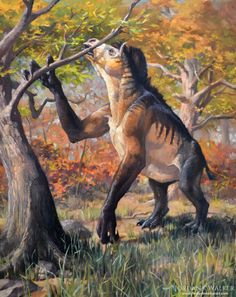 """was a horsey-rhino that ate leaves. Its weird teeth inspired the latin name. """"Pebble teeth"""" were for grinding up leaves and foliage. long claws pulled down on tree branches, and they browsed all day. These beasts were powerful, but slow; Prehistoric Wildlife, Prehistoric World, Prehistoric Creatures, Alien Creatures, Fantasy Creatures, Mythical Creatures, Historia Natural, Extinct Animals, Dinosaur Art"""