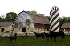 Patriotic farm in Minnesota