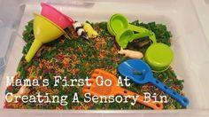 Sensory Bins, Grandkids, Activities For Kids, Articles, Create, Tips, Kid Activities, Petite Section, Sensory Boxes