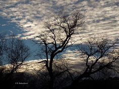 Are You a Sky Watcher? #Photography