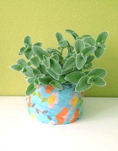 Urban Jungle Bloggers: #plantcolorpop by @konfettinatti