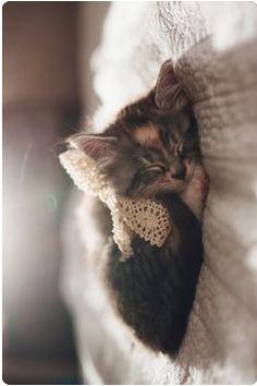 Sweet Dreams Little One ♥
