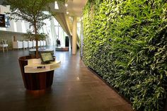 Resort lobby that hosts plenty of foliage and small check-in areas for a personal touch.