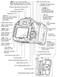 Canon 6D Mark II Cheat Sheet for Portraits and Nature