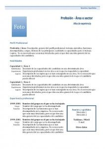 Currículum Vitae Funcional: Combinado 1 Site Cv, Cv Curriculum, Spanish Vocabulary, Projects To Try, Education, Words, Tips, Quilling Ideas, Birthdays