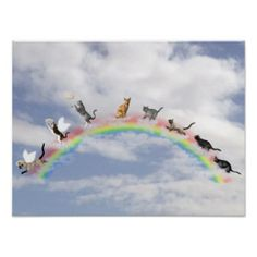 Cats Waiting At Rainbow Bridge Poster - Cats Waiting At Rainbow Bridge Poster - You can add your own message or memorial to this poster with customized text. A great way to honor your cat who had gone to the bridge. The kitties are running up the bridge on the right and getting their halo's and wings as they come down the other side.