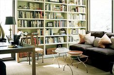 library / painted bookcases