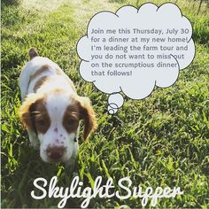 Our new friend Archer has a message for you! Get your tickets to see him now wfmskylightsupper.brownpapertickets.com
