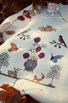 Willow Hill Samplings - Flora and Fauna