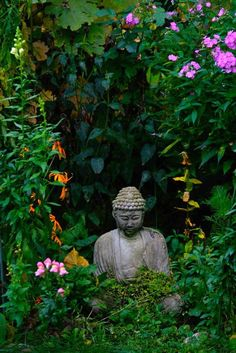 Garden Buddha for meditation. Inspiring #quotes and #affirmations by Calm Down Now, an empowering mobile app for overcoming anxiety. For iOS: http://cal.ms/1mtzooS For Android: http://cal.ms/NaXUeo