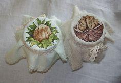 Gallery.ru / Фото #2 - шишки и орешки - EditRR
