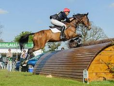 belton horse trials 2014 cross country .