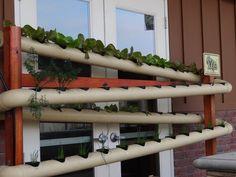 jardins potagers vertical verticaux (8)                                                                                                                                                                                 Plus