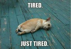Ever felt like this...???...LOL...