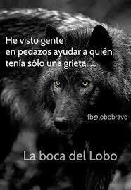 233 Mejores Imágenes De Frases De Lobos En 2019 Frases