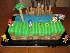 My daughter loves Sonic and wanted him on her birthday cake. I decided to make a scene from the game. I used two half sheet cakes. I made each one with