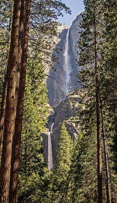 Yosemite Falls - C Waterfalls Love.