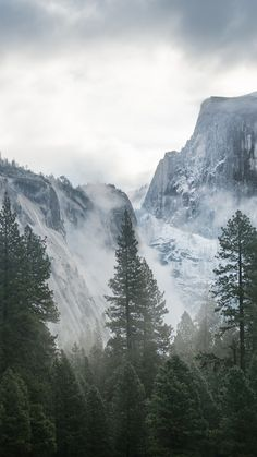 Yosemite 5k 4k Wallpaper 8k Forest Osx Apple Mountains Vertical Yosemite Wallpaper Yosemite Wallpaper