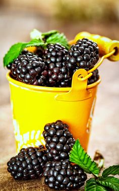 Blackberry Bramble, Harvest Basket, Fruits Photos, Fruits And Vegetables, Healthy Drinks, Berries, Goodies, Herbs, Desserts