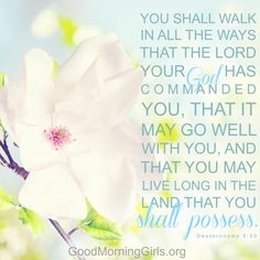 Deuteronomy 5:33 You shall walk in all the ways...  (gmg Bible study)