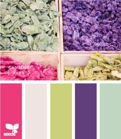 candied hues... colors for my girls room.