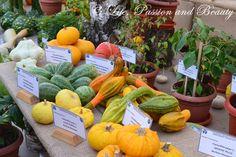 Life, passion and beauty: Pictures: Expozitia de flori, fructe si seminte Cantaloupe, Carrots, Vegetables, Beauty, Beleza, Carrot, Vegetable Recipes, Veggies