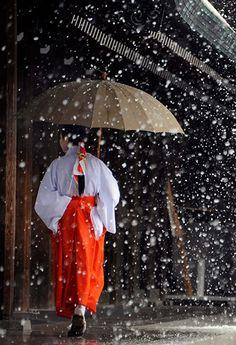 Tokyo, Japan: A miko, or shrine maiden, walks as snow falls at Meiji Shrine