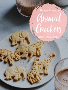 These Paleo Animal Crackers are a gluten and grain free snack option that doesn't disappoint. This childhood classic is a household favorite! Paleo Cookies, Paleo Treats, Gluten Free Cookies, Paleo Food, Paleo Recipes, Free Recipes, Clean Eating Desserts, Healthy Desserts, Delicious Desserts