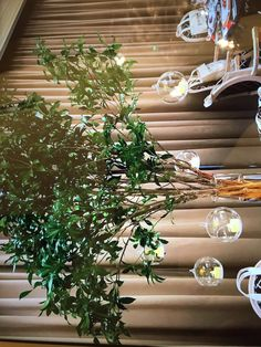 Wreaths, Plants, Home Decor, Decoration Home, Door Wreaths, Room Decor, Deco Mesh Wreaths, Plant, Home Interior Design