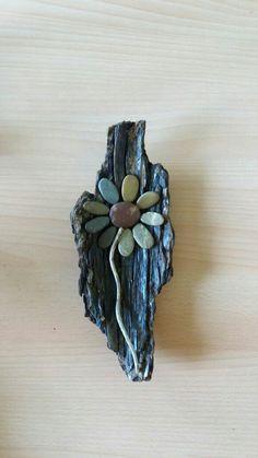 Treibholz mit Steinblume