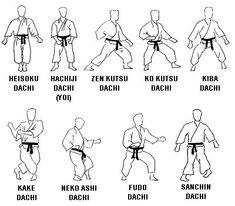 Shisei Posiciones  Cortesía de Gimnasio Osaka Salamanca - Técnicas