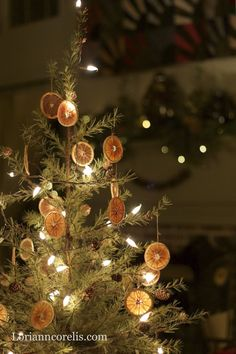 The Spotted Hare: Christmas Traditions ~ Simple Christmas- dried orange slice ornies how-to.