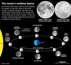 "The moon's endless dance - as the Earth and moon orbit the sun together, the pattern of day and night on the lunar surface constantly changes. We refer to the percentage of illumination on the visible face of the moon as the moon's ""phase"". There are 8 major named phases that have been known throughout human history. ♥ Save for reference."