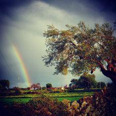 Dove inizia un arcobaleno