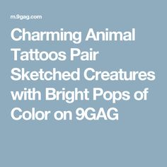 Charming Animal Tattoos Pair Sketched Creatures with Bright Pops of Color on 9GAG