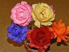 Creative DIY crafts: Recycle and DIY: Rhinoculous flowers with waste wa...