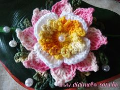 Flor Encanto