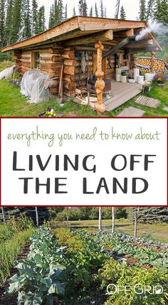 By turning to natural living, you put less strain on the environment, learn how to become entirely self-reliant, and experience the many joys of Mother Nature. Yet living off the land is not for the weak or ill-prepared. Homestead Survival, Survival Prepping, Survival Skills, Off Grid Homestead, Homestead House, Homestead Layout, Homestead Living, Nature Living, Off Grid Cabin