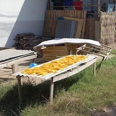 Slivers of mango drying in the sun in a backstreet in outer Vientiane. Dried mango is a popular snack in Laos and Thailand and evidently lasts a lot longer than the fresh stuff. #morning #mango #vientiane #laos #eatdrinklaos #streetphotography #asian   Eat Drink Laos http://eatdrinklaos.com