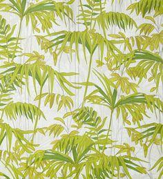 Papel pintado con hojas y plantas verdes fondrosas de la selva - 2020557