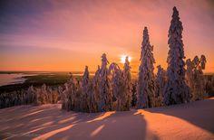 Photograph Winter in Finland ... by Valtteri Mulkahainen on 500px - sooooo beautiful