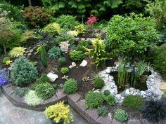 Merveilleux Dwarf Conifer Garden